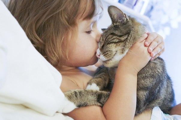 Как воспитать ребенка добрым и послушным