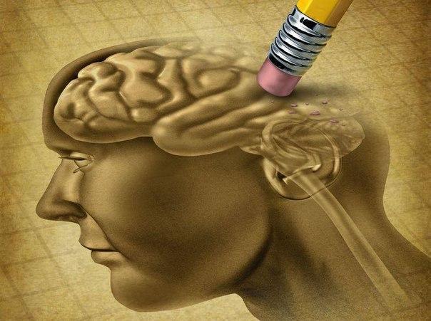 10 вещей, отрицательно влияющих на мозг. 12751.jpeg